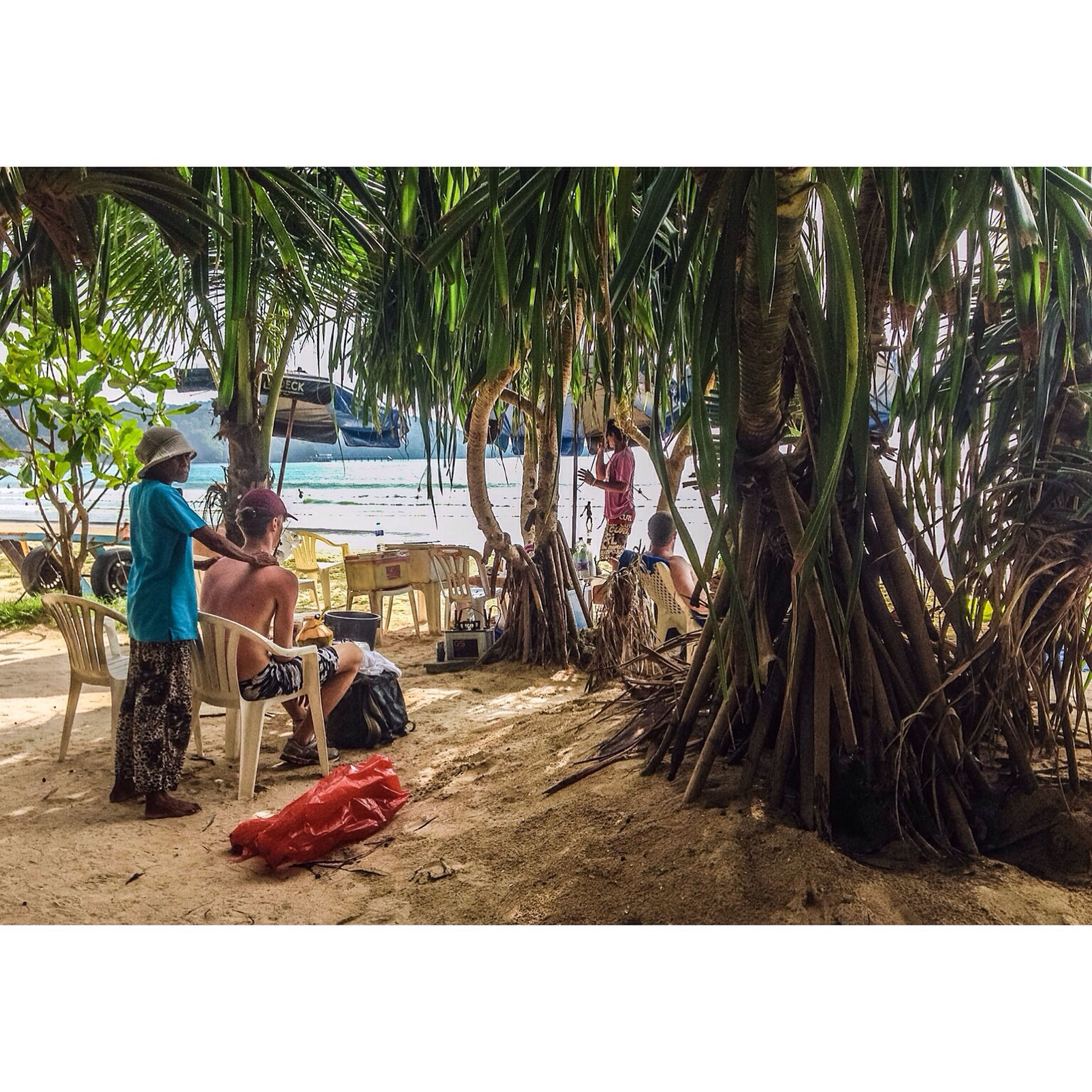 tree, palm tree, sitting, transportation, full length, tree trunk, men, growth, solitude, relaxation, day, person, plant, tranquil scene, tranquility, nature, outdoors