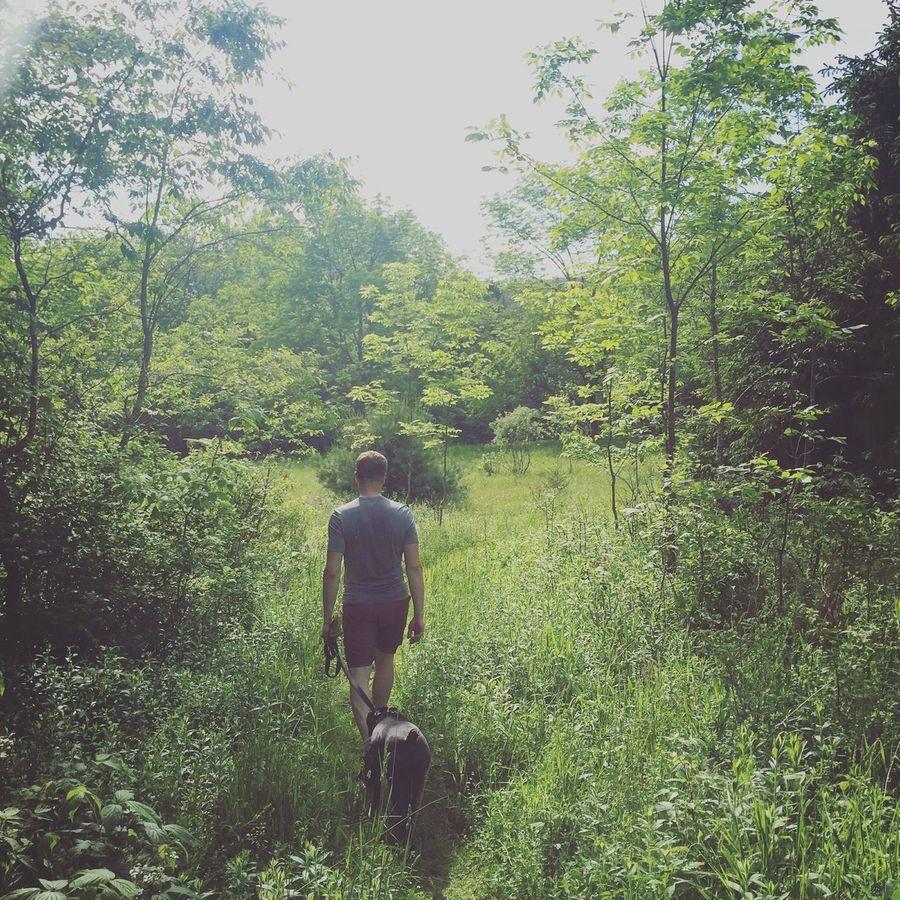Hiking Summertime