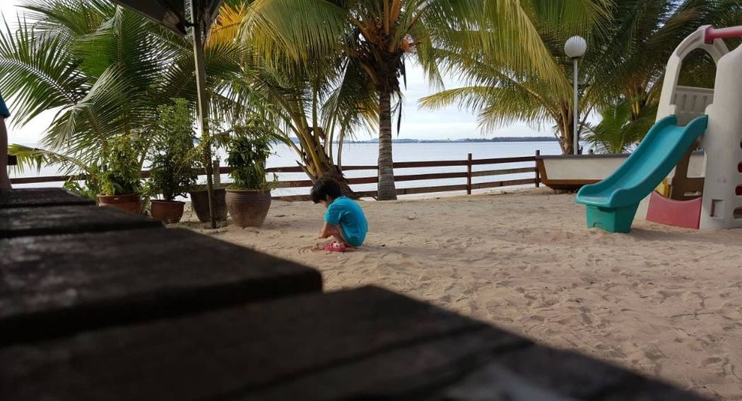 Dayoutatthebeach Eyem Market Eyeem Market EyeEmNewHere EyEmNewHere Playing With Sand Coconut Trees Beach Childhood Playground Rear View Tree Sand Day Outdoor Play Equipment Child EyeEm Ready