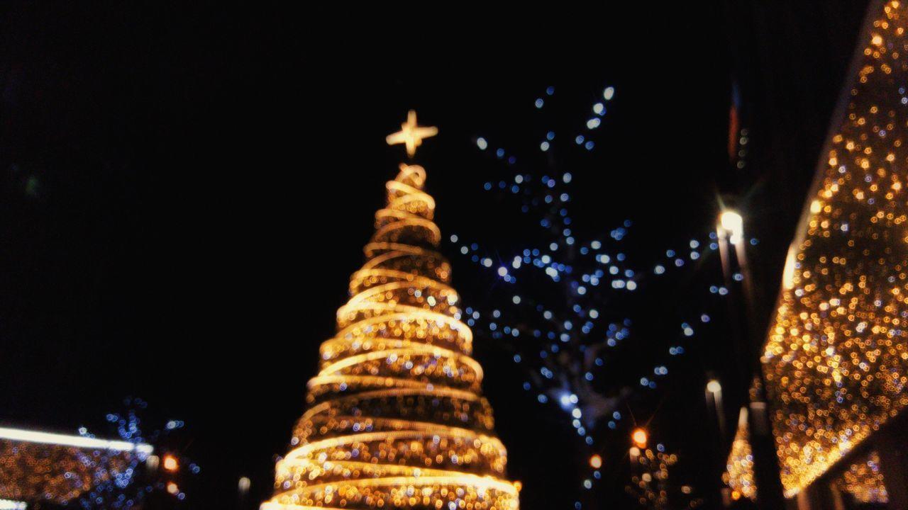 xmas mood Blur Xmas Lights  Xmas Tree