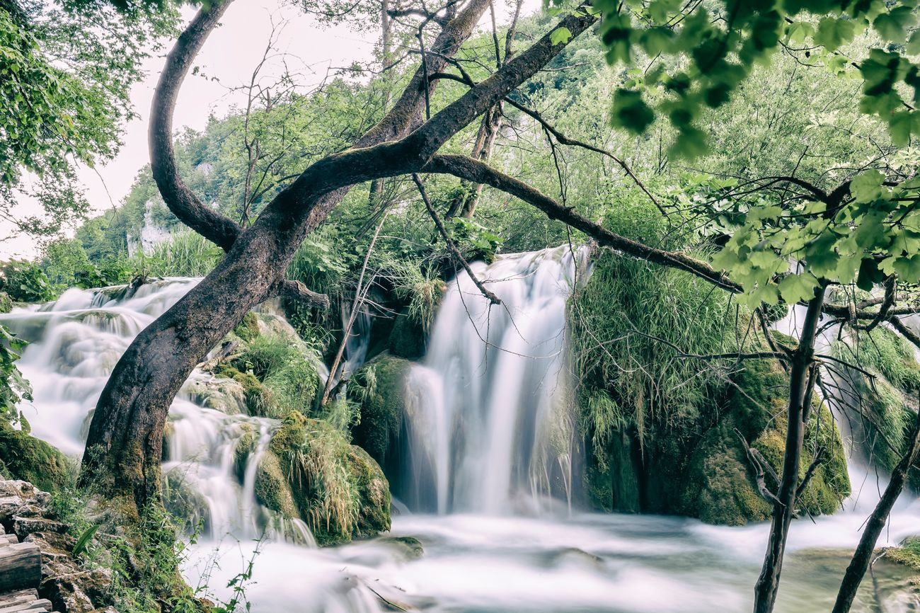 ©468 waterfall at its finest Tree TreePorn Waterfall Waterfall #water #landscape #nature #beautiful Long Exposure Water Beauty In Nature Nature Motion Nature_collection Vacations Followme The Week Of Eyeem Croatia Blue Water Let's Go. Together. Exceptional Photographs EyeEmNewHere EyeEm Nature Lover EyeEm Masterclass Simple Quiet Love EyeEm Sommergefühle Backgrounds EyeEm Selects