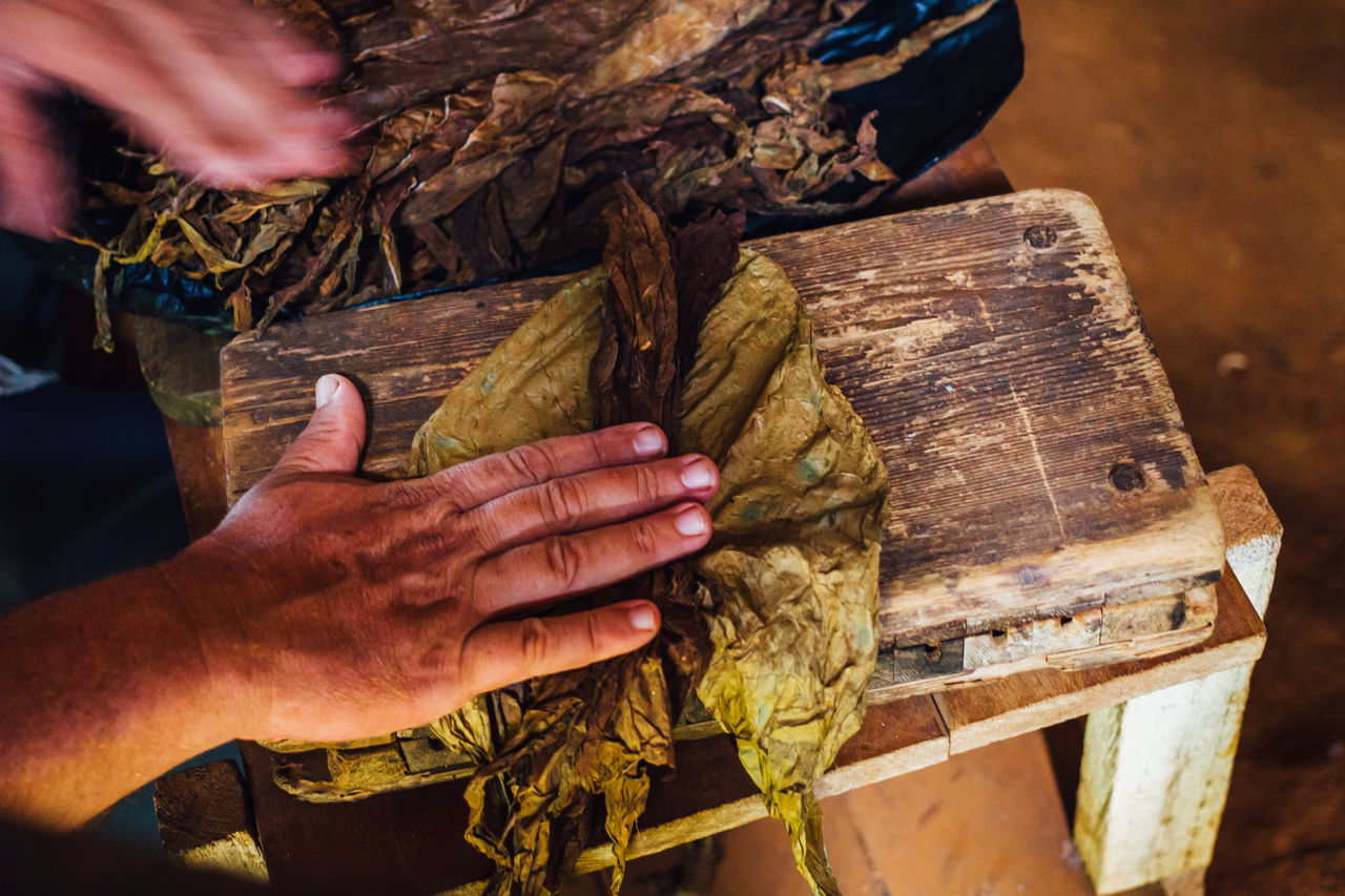 Cigarette  Close-up Cuban Cigar Handmade Holding Human Body Part Human Hand Nicotine Occupation Real People Skill  Tobacco Tobacco Barn Tobacco Leaf Wood - Material Working Wrapped Wrapping