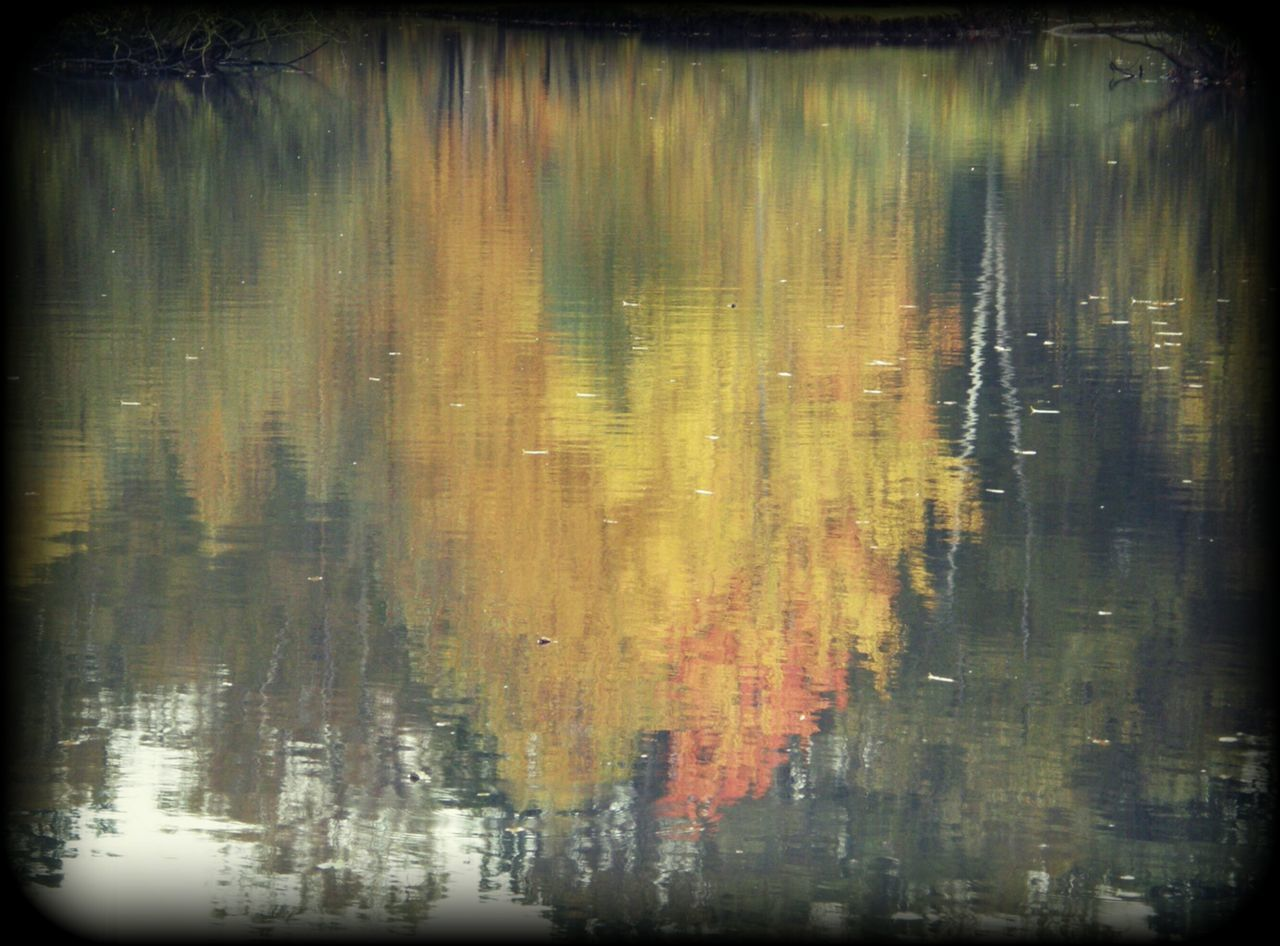abstract, backgrounds, paint, textured, no people, painted image, close-up, outdoors, day
