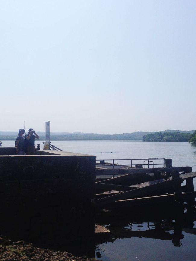 'The Photographer' Harbor Clear Sky Waterfront Loch  LochLomond Scotland Balmaha Couple Photographer Dock Dockside