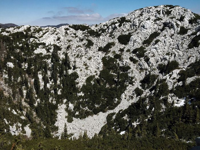"""Wall"", Northern Velebit National Park, Croatia, 2017. Northern Velebit National Park Velebit Velebit Mountain Croatia Nature Landscape Mountain Beauty In Nature No People Tree Rock - Object"