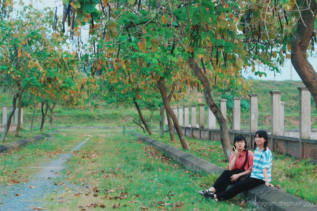 sitting, two people, tree, togetherness, real people, autumn, leaf, nature, full length, day, front view, love, outdoors, lifestyles, young women, leisure activity, smiling, young adult, bonding, women, grass, beauty in nature, adult, people