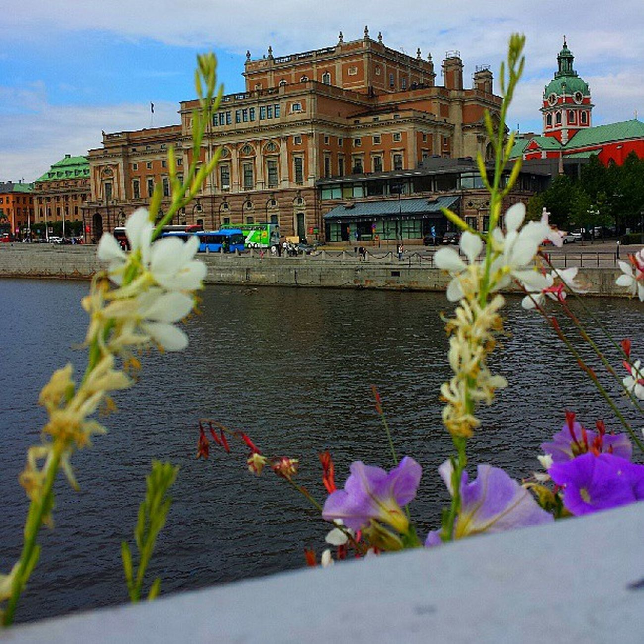 En dryg vecka sedan vi kom hem från Stockholm. Jisses vad tiden går fort! Summer Stockhom Sea Flowers city
