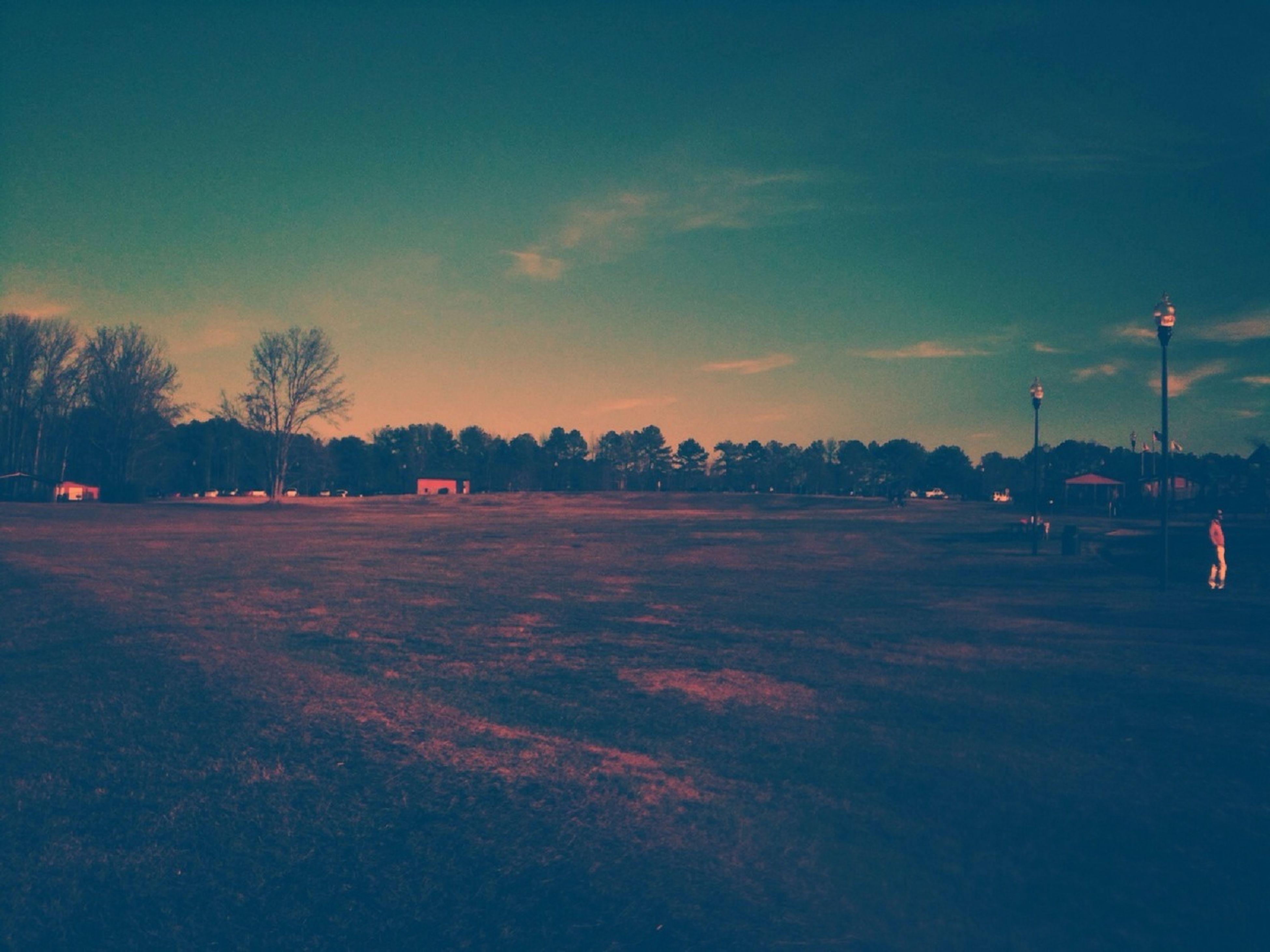 transportation, sky, tree, road, car, land vehicle, street light, illuminated, mode of transport, street, sunset, dusk, outdoors, cloud - sky, blue, no people, landscape, field, road marking, night