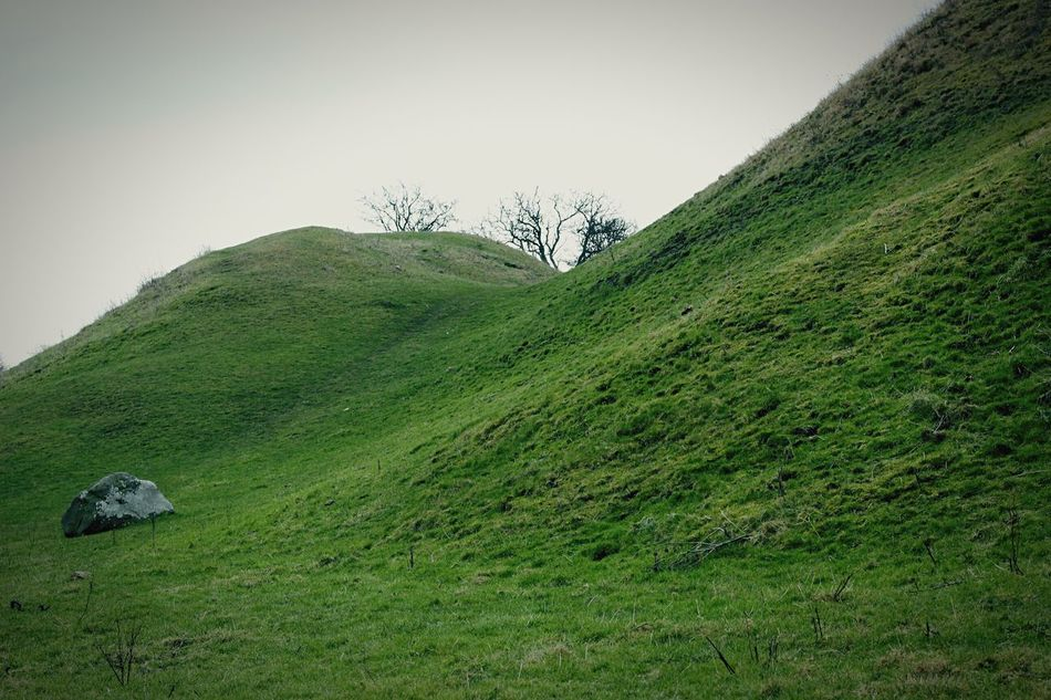 The Hills Stone Trees Grass Green Nature Nature Lover