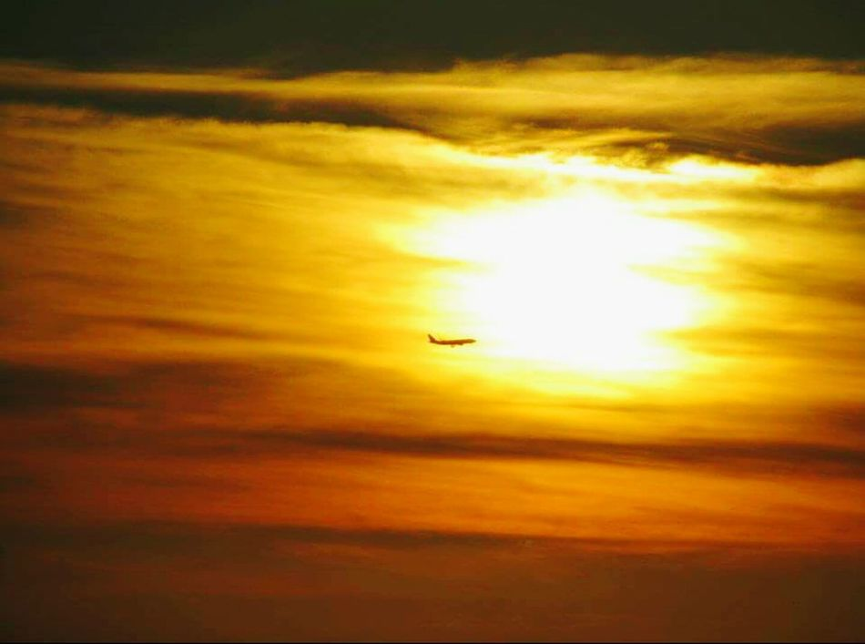 Volare Nature Fly Airplane Volare Sky Tramonto Rome Rome, Italy ıtalia Roma Romantic Sogni Sole Sky Scraper Sunset Flying Transportation Air Vehicle Silhouette Mode Of Transport Cloud - Sky Outdoors Mid-air Travel Journey