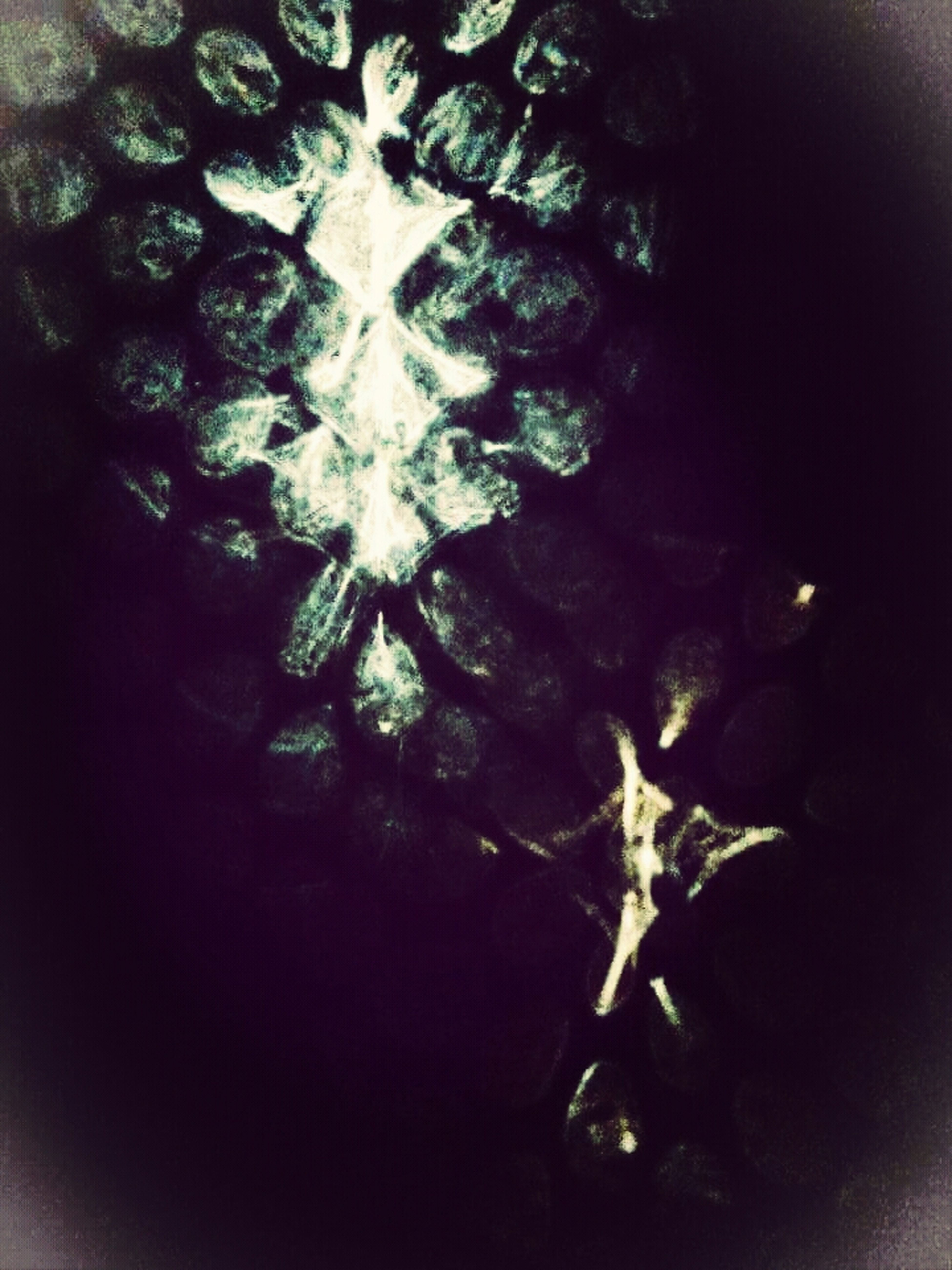 Photography Glasseffect Lighting Geometric Art Monochrome Me And My Camera Philippines