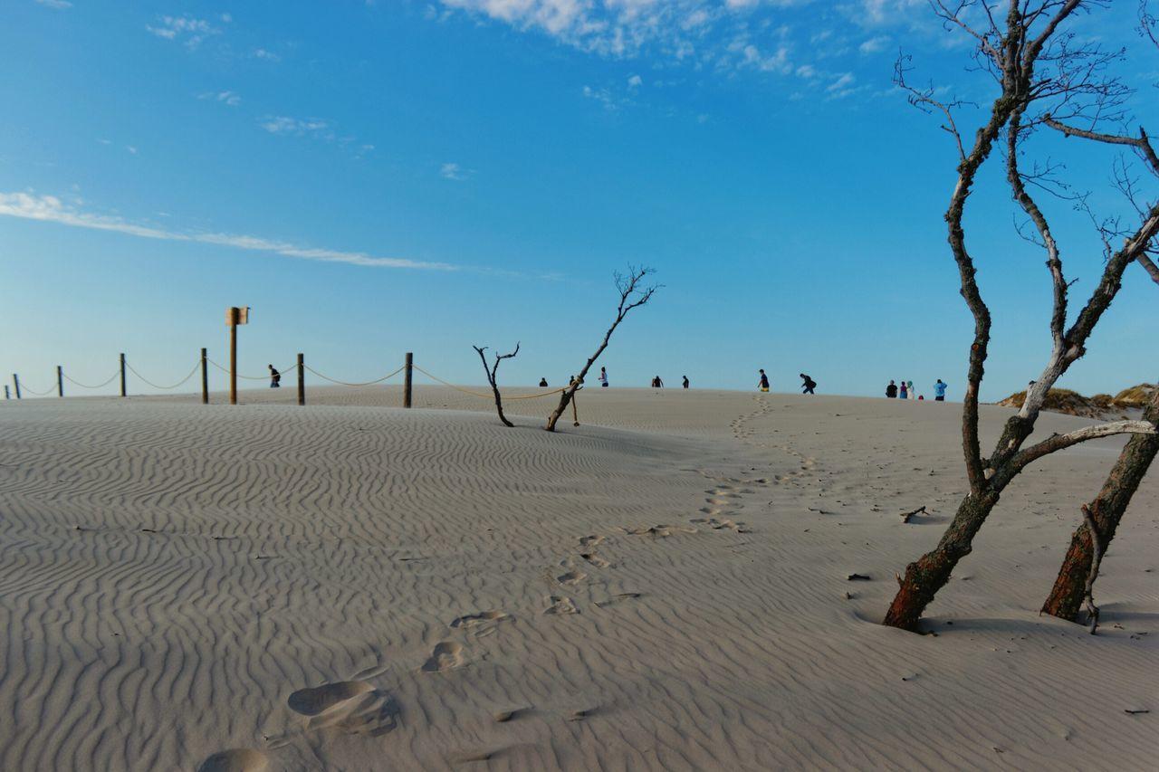 Słowiński Park Narodowy EyeEm Poland EyeEm Gallery EyeEm Best Shots EyeEm Best Edits EyeEm Best Shots - Landscape EyeEm Best Shots - Nature EyeEm Nature Lover EyeEm Best Pics Deserts Around The World