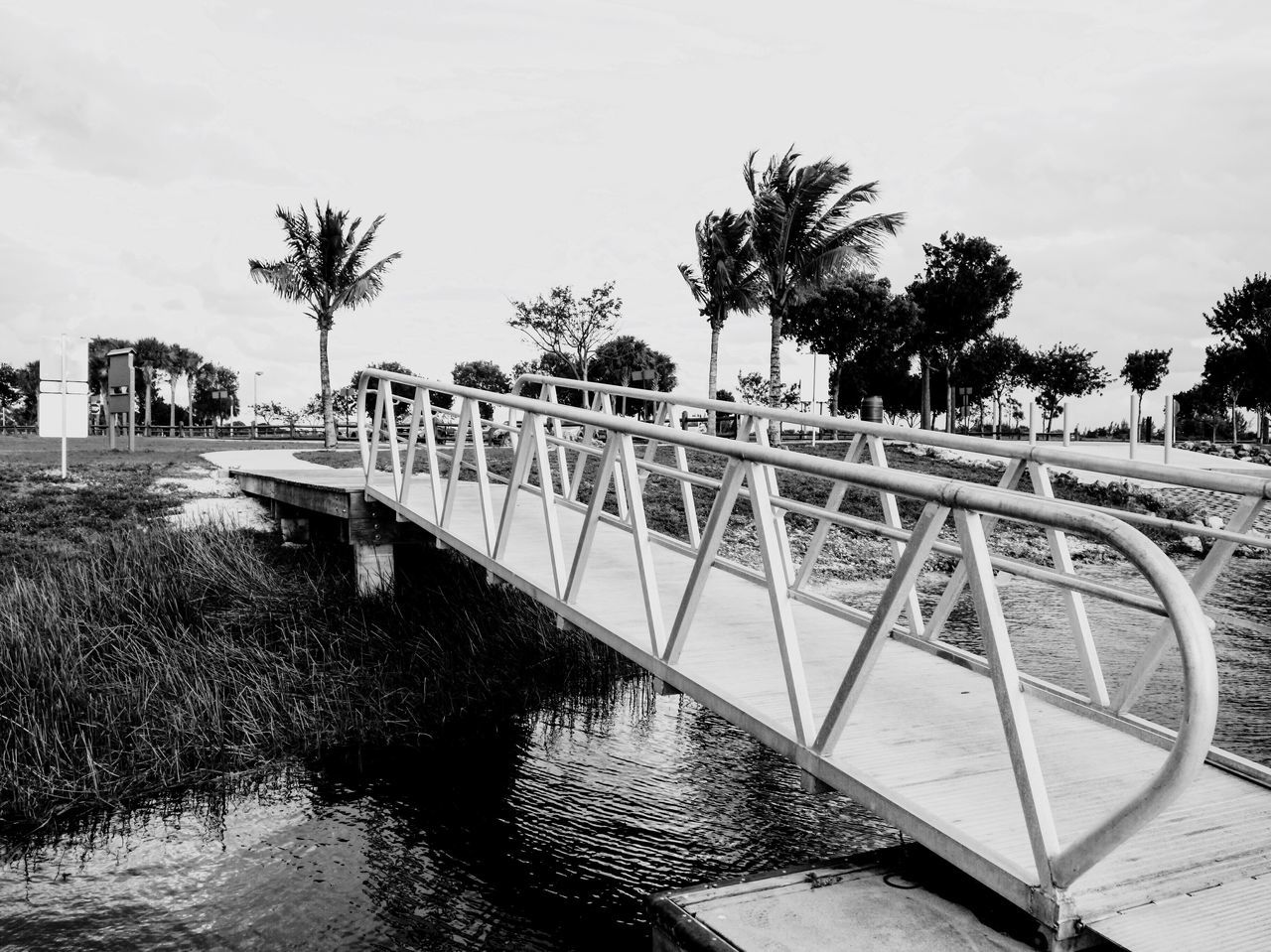 tree, water, built structure, railing, architecture, outdoors, sky, palm tree, day, building exterior, no people, nature