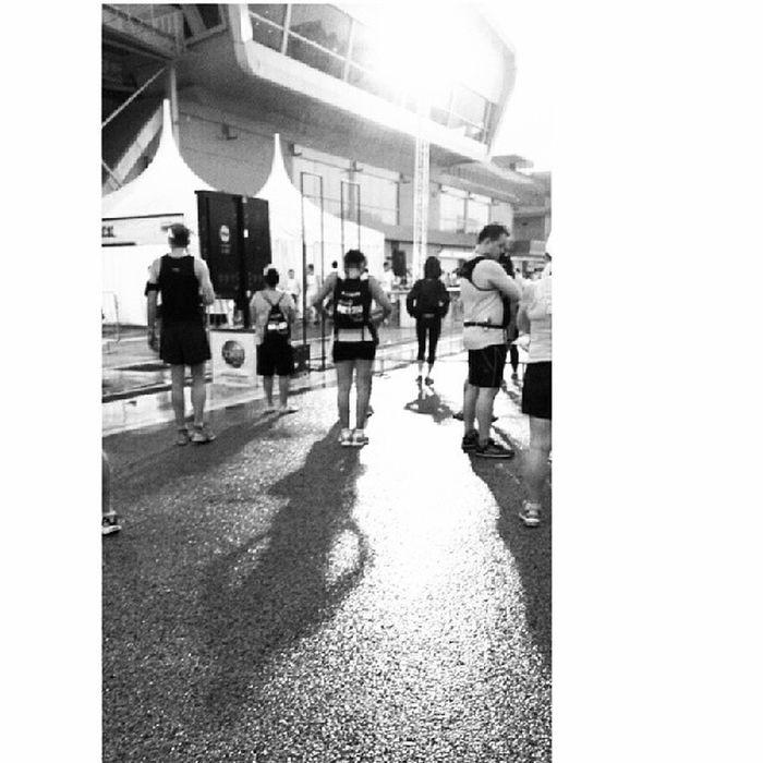 Shadows Marathon Singapore 10km ntuc run 350
