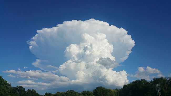 Hello World Check This Out Hanging Out Taking Photos Clouds Clouds And Sky Clouds & Sky Big Clouds Cumulonimbus Cumulonimbus Cloud Clouds Collection South Dakota Southdakota Clouds And Trees High Clouds