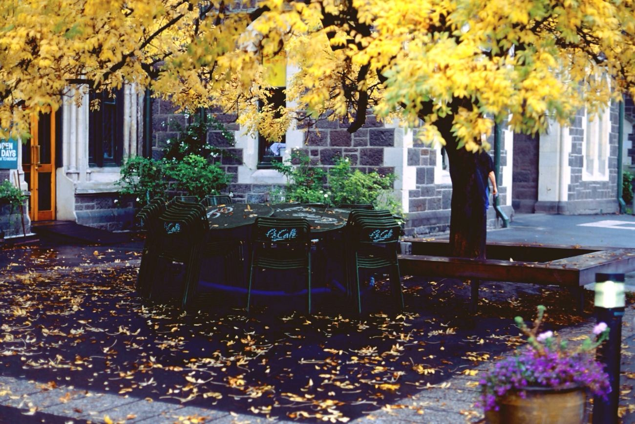 I left my heart in Christchurch Art Centre Hello World Taking Photos Autumn Autumn Colors Traveling Travel Photography Film New Zealand