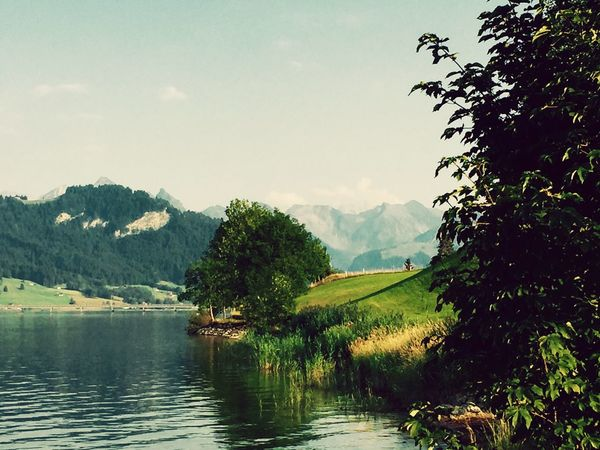 Lake Nature Swiss Alpes