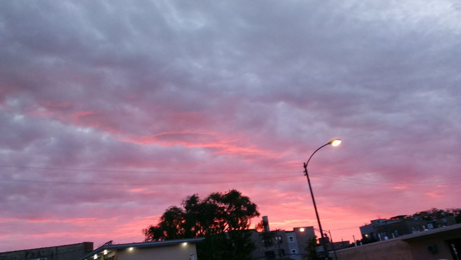 The Red sky in Chicago Scenics OutdoorsNo People Sky Nature Cloud - Sky Low Angle View Tree Silhouette Night First Eyeem Photo Beauty In Nature Sunset Dramatic Sky