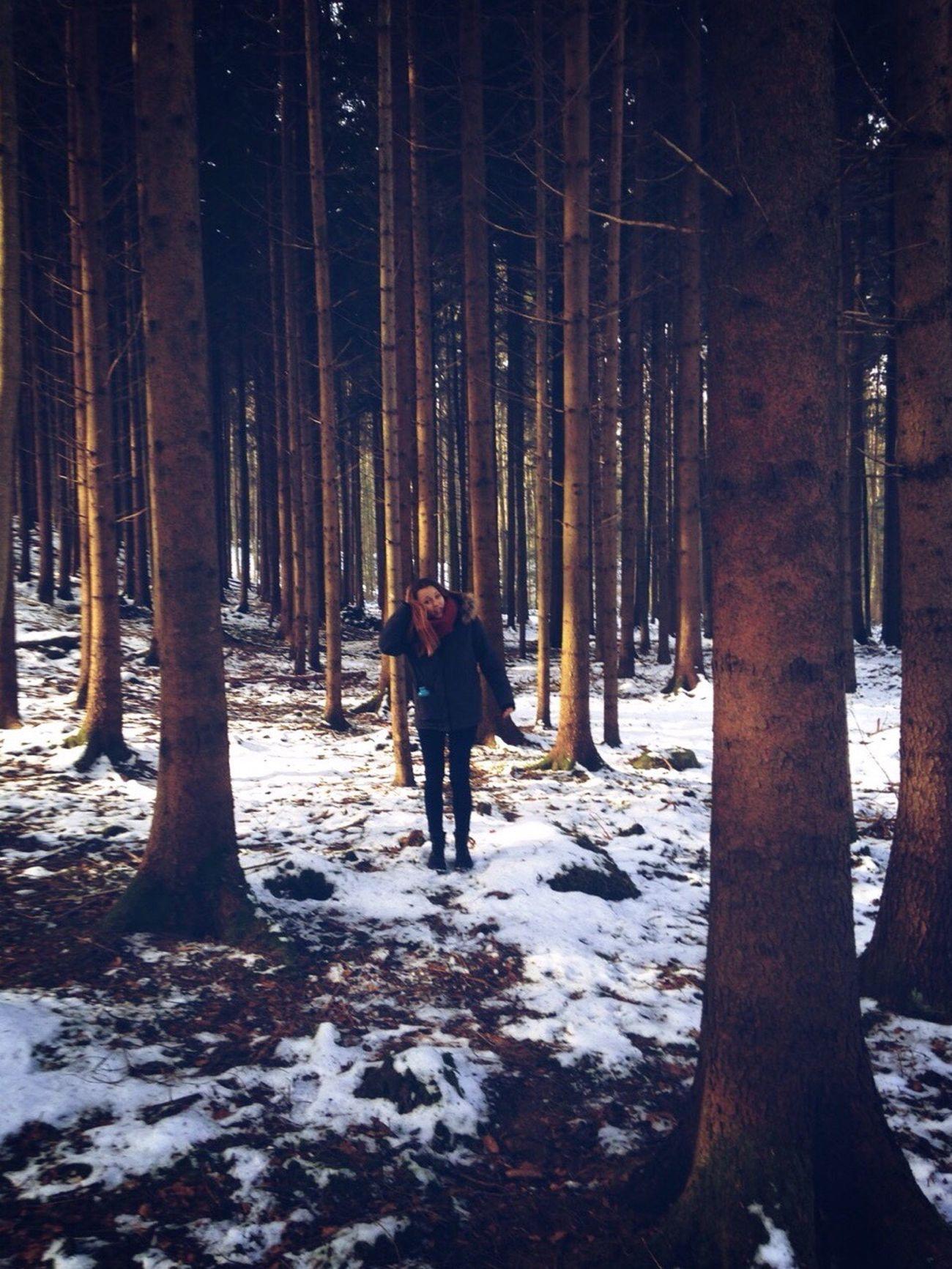 snowy Forest, near Zurich Zürich Snowy Forest Forest Snow Girl