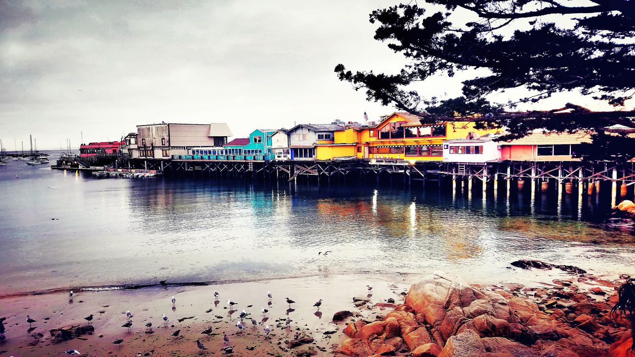 Monterey Monterey Ca Fishermans Wharf Fishermanswharf Pier Seaside California Coast Multi Colored Shore Gloomy Gloom Gray Skies Wharf Water Coast Seagulls