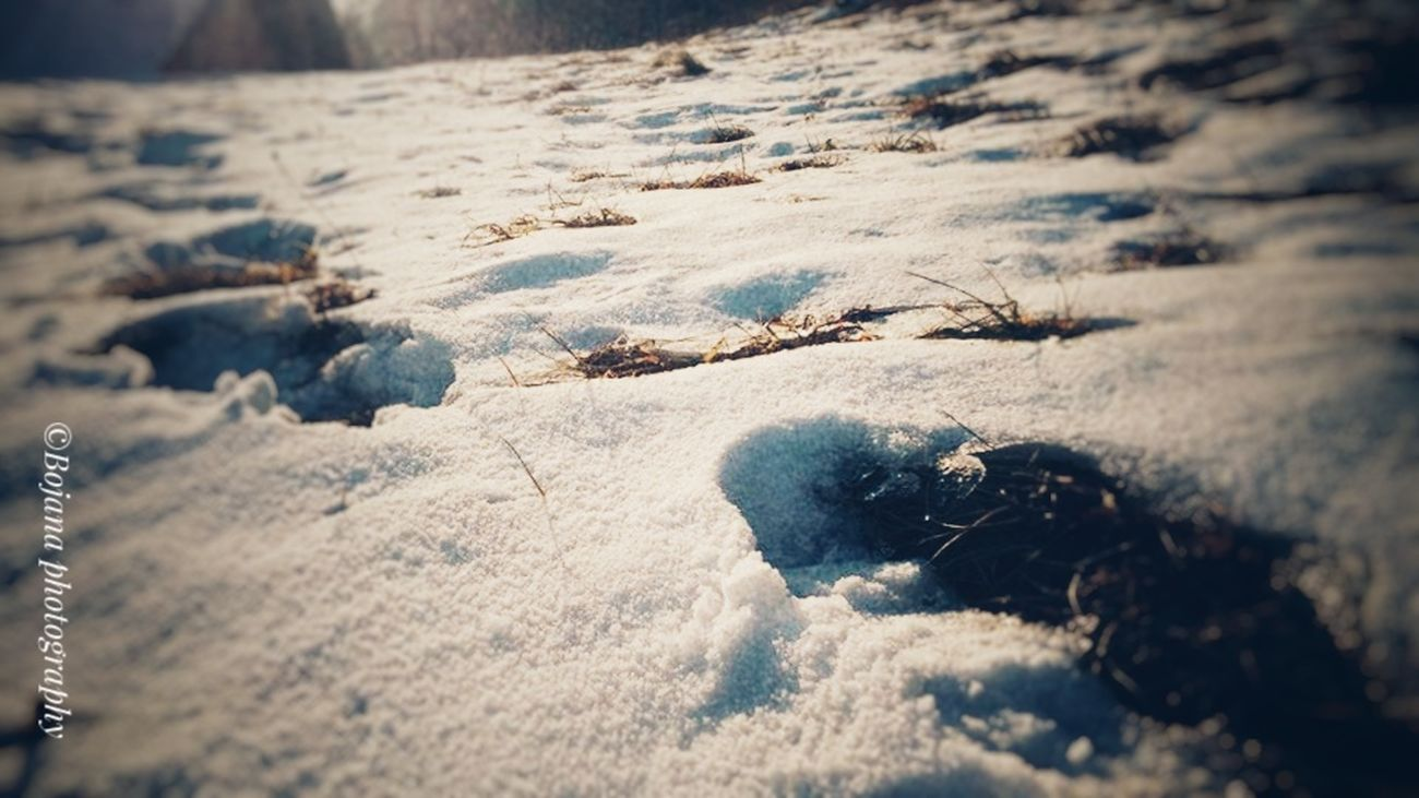 Snow ❄ Winter Cold Temperature Slovenia Slovenia ❤ Landscape_photography EyeEmNewHere EyeEmbestshots Wintertime Eye4photography  White Background Life Is Beautiful EyeEm Nature Lover LG G3 Photography Eyevision. Eye4photography
