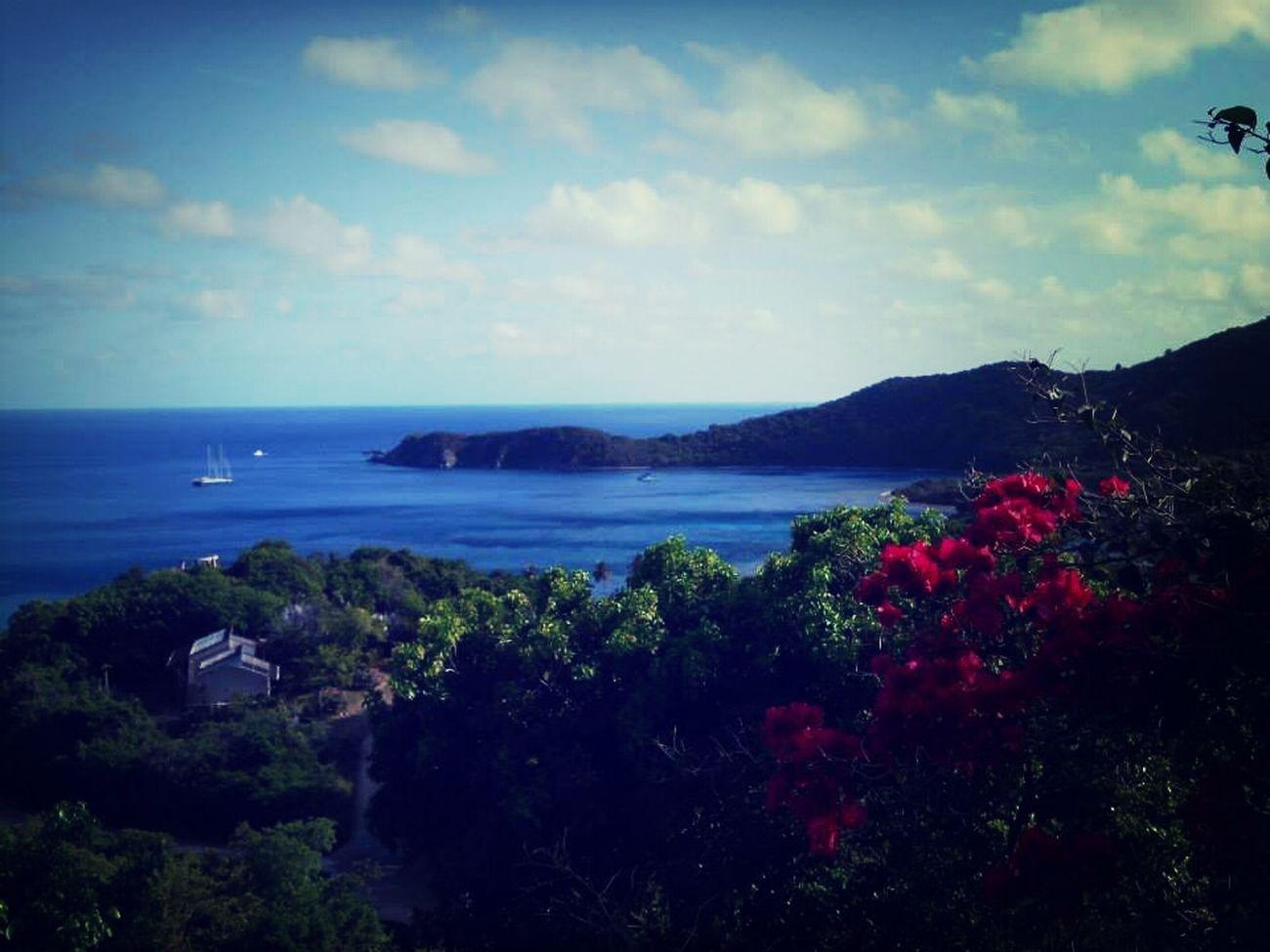 Virgin Gorda british virgin islands Travel Beach Bvi