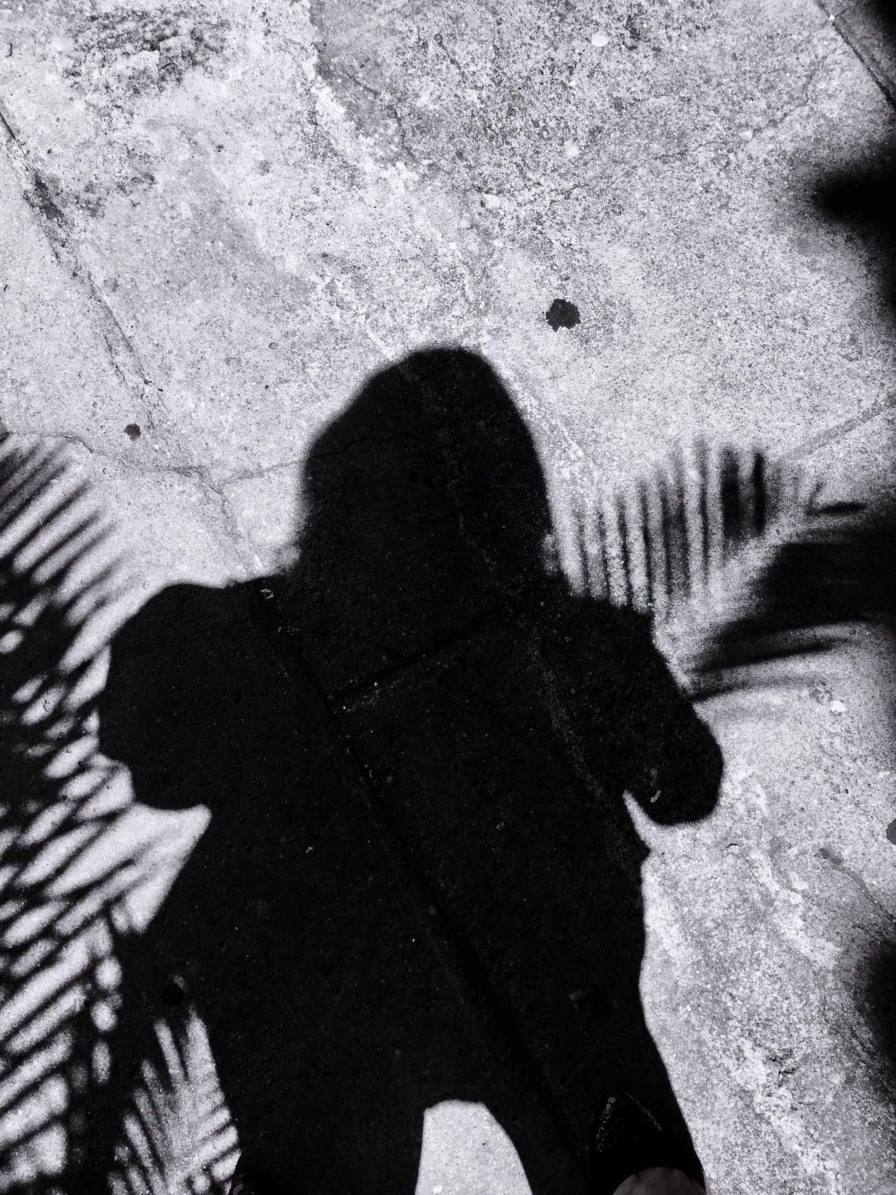 Shadow Play Shadow One Person IPhoneArtism Full Length IPhoneography Palm Tree Blackandwhite Photography Blackandwhite Shapes Black & White
