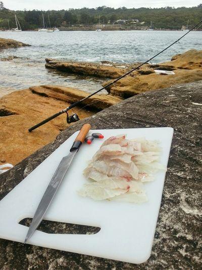 Ocean to stomach 30mins. Fresh caught sashimi breakfast The Foodie - 2015 EyeEm Awards EyeEm Fishing Ocean To Plate Paddock To Plate Fresh Sashimi  Sydney Breakfast Time Time For Breakfast