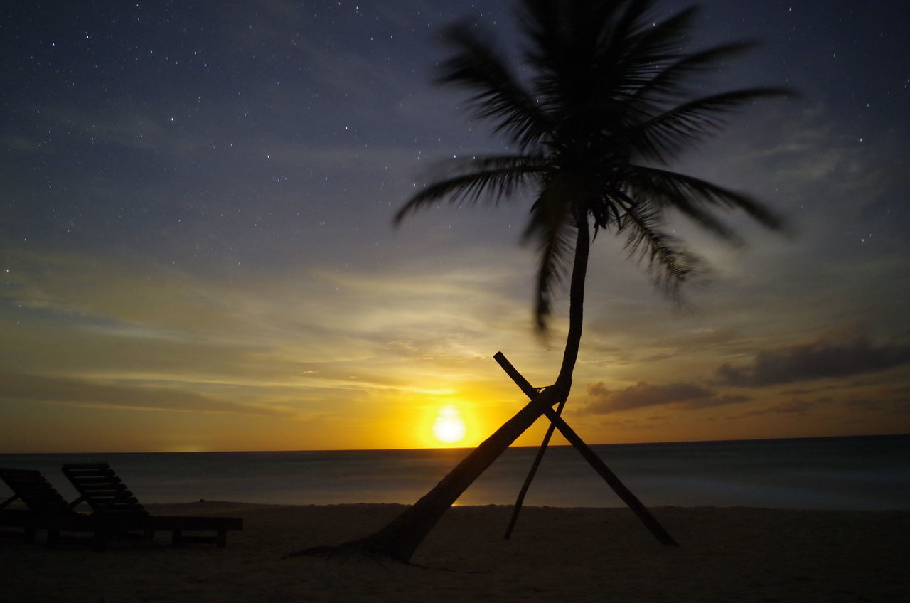 moon rising at night above the ocean Astronomy Beach Beauty In Nature Galaxy Horizon Over Water Mexico Moonrise Moonset Nature Night No People Outdoors Palm Palm Tree Paradise Paradise Beach Scenics Sea Sky Star - Space Stars Sunset Tranquil Scene Tranquility Water