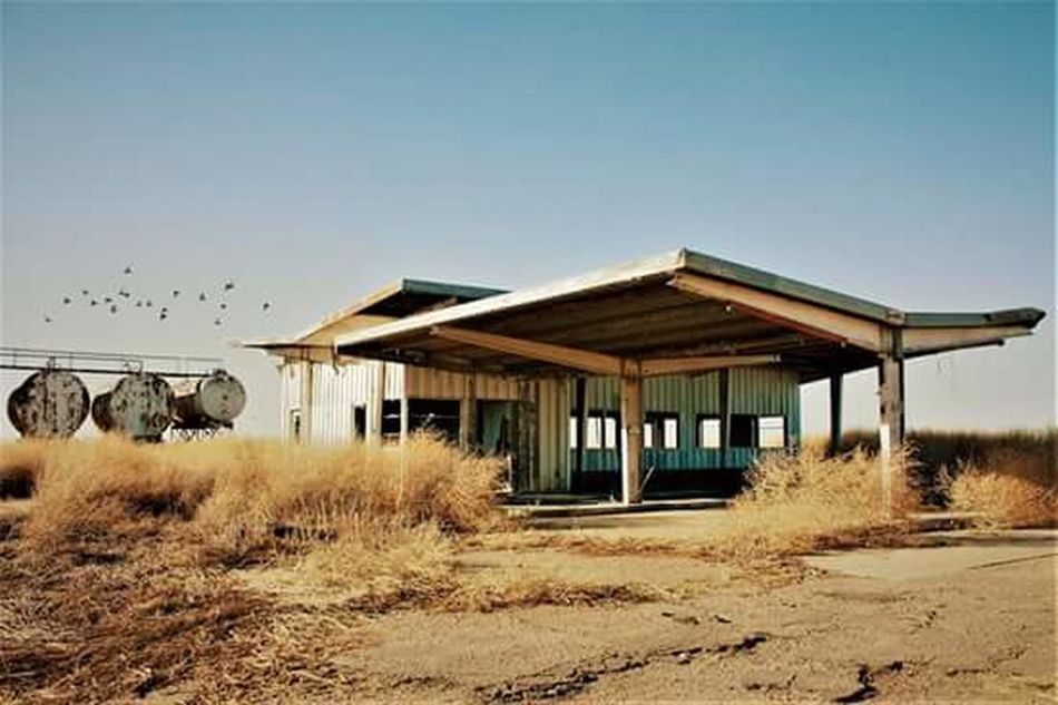 Built Structure Architecture House Roof Sky Building Exterior No People Outdoors Day Nature Abandoned Abandoned Building Old Buildings Gas Station Birds Canonphotography Canon Camera Xsi Finding New Frontiers