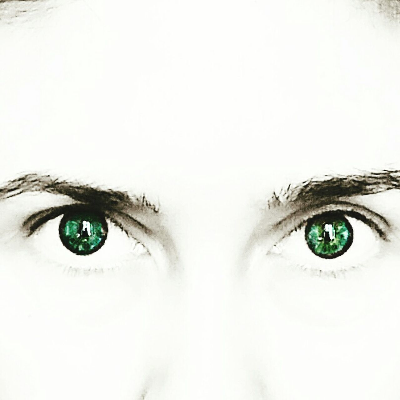 Alessandra Eyes Eyes Are Soul Reflection Eyesblue Friends ❤ Occhi Occhiverdi Occhioni OcchiBlu Occhionibelli Sguardo  Sguardi Sguardoprofondo Sguardi Intensi Sguardo  Look Looking At Camera Looking Look Me In The Eyes Looking Away Look Portrait Of A Woman Portrait Of A Friend Portrait Portrait Photography