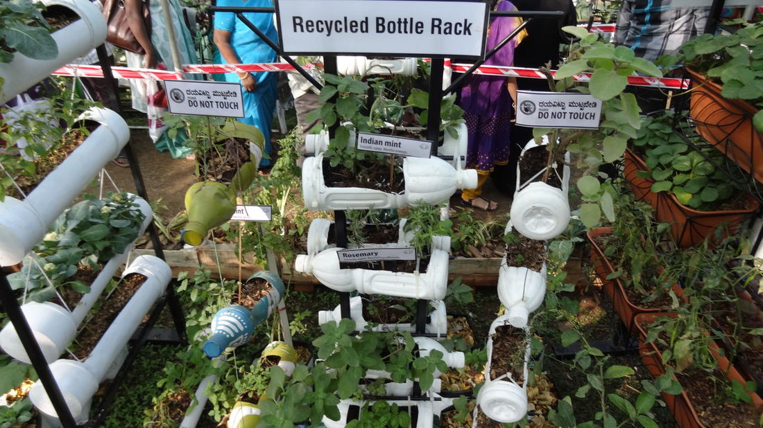 It's time to build our world back! Teach your children, how to grow your food in organic way. Grow Food Grow Tubes Grow Your Own Food How Do We Build The World? Model Terrace Modern Ter Organic Farming Organic Food Pesticides Free Recycled Bottle Rack Recycled Materials