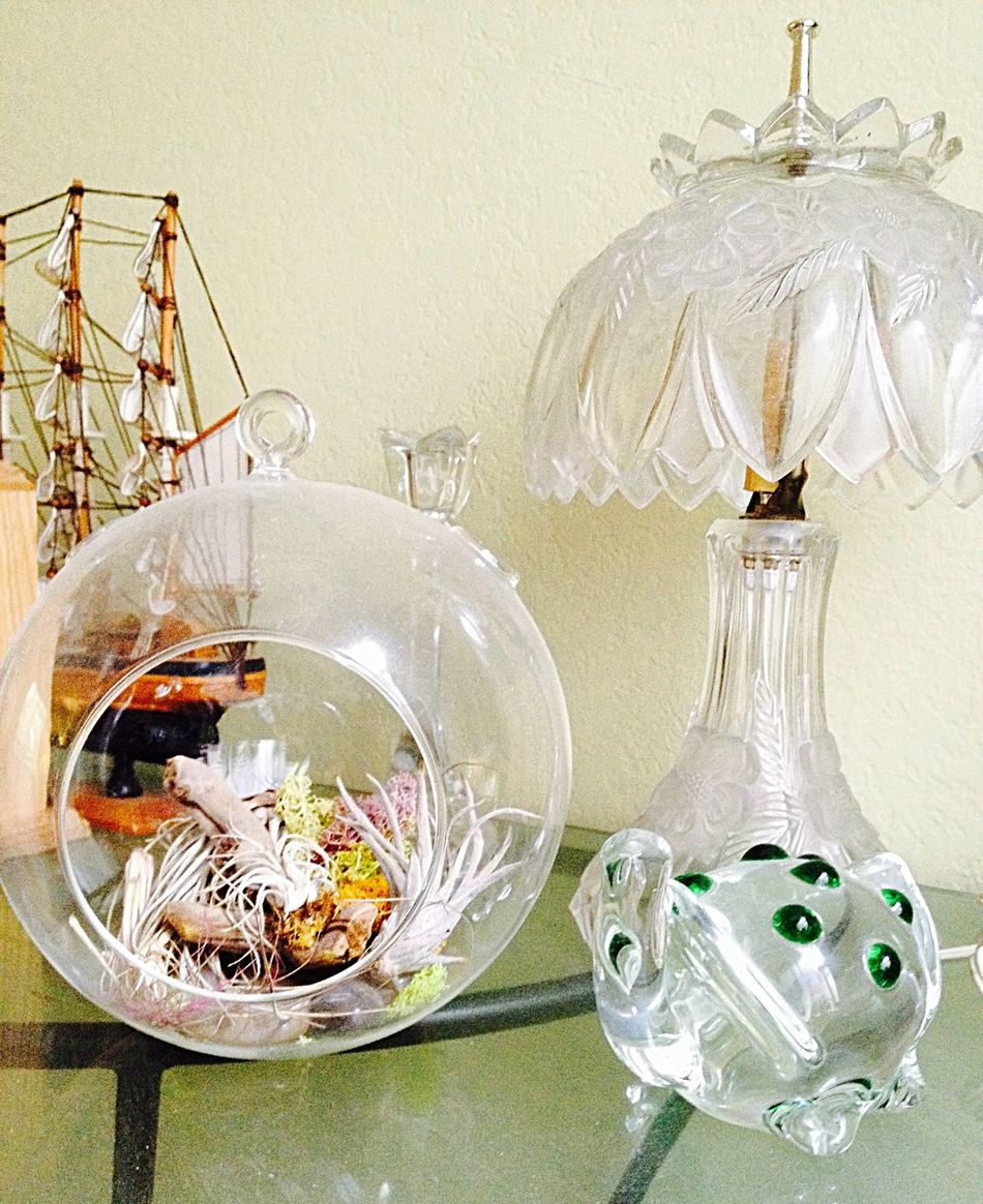 Air Plant, Lamp, Boat Interior Views Air Plant Air Planting Lamp Glass Lamp Shade Glass Lamp Model Ship Glass Table Glass Turtle