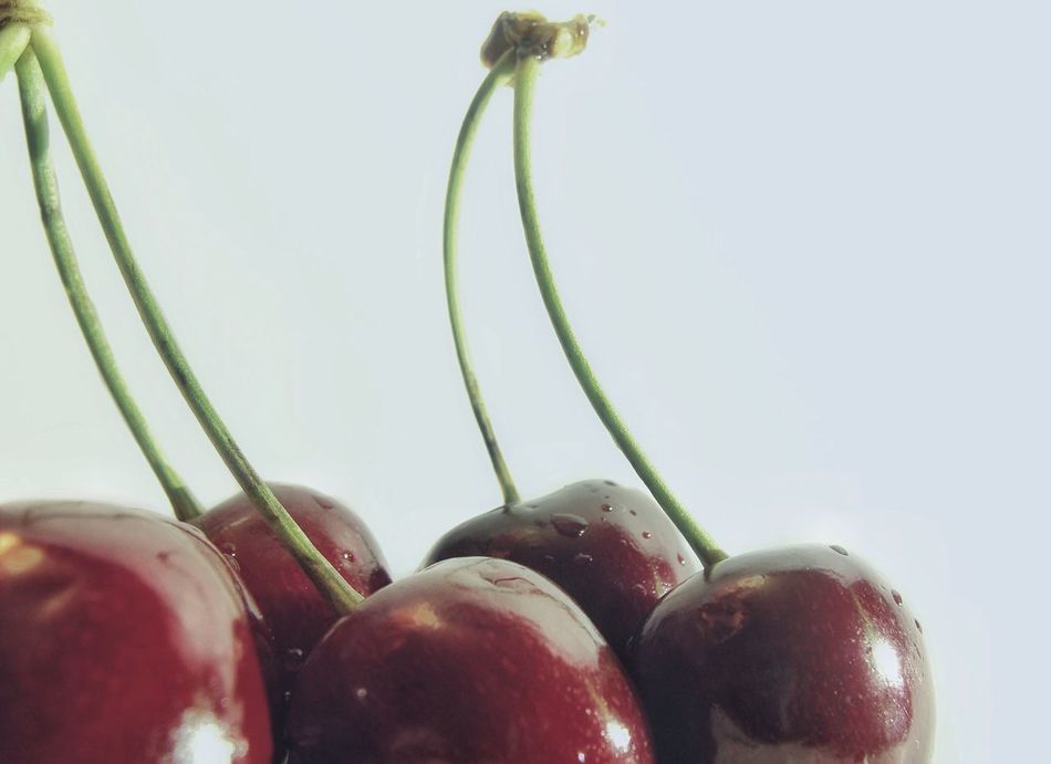 🍒 Cherry series 5️⃣ the last one 😄😂 Cherryred Cherries Cherry Fruits Fruits ♡ Summertime Food Photography Foodphotography Red Cherry Fresh Red White Background Taste Of Summer  Close-up Food Cherries🍒 Exceptional Photographs Maximum Closeness