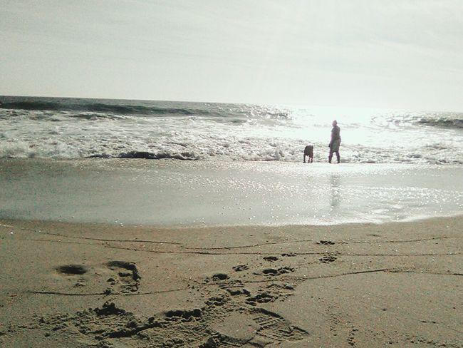 Beach Silhouette Horizon Over Water Beauty In Nature Sand Shore
