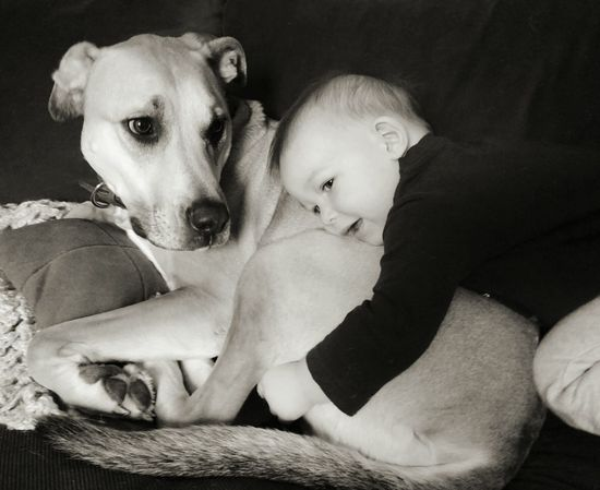 Boy and Dog. Boy Dog Dog Love Hug Caress Couch Pet Blackandwhite Always Be Cozy Love Caring Child Innocence Happy Child  Myson Monochrome Photography Children Photography Eye4photography  Cute Dog And Baby Bestfriend Popular Animal Themes Things I Like Enjoy The New Normal
