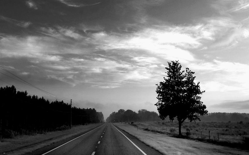 Tree The Way Forward Road Cloud - Sky No People Outdoors Day Nature Landscape Sky The Week On EyeEm Light And Shadow Bnw_friday_eyeemchallenge Bnw_dramatic_landscapes