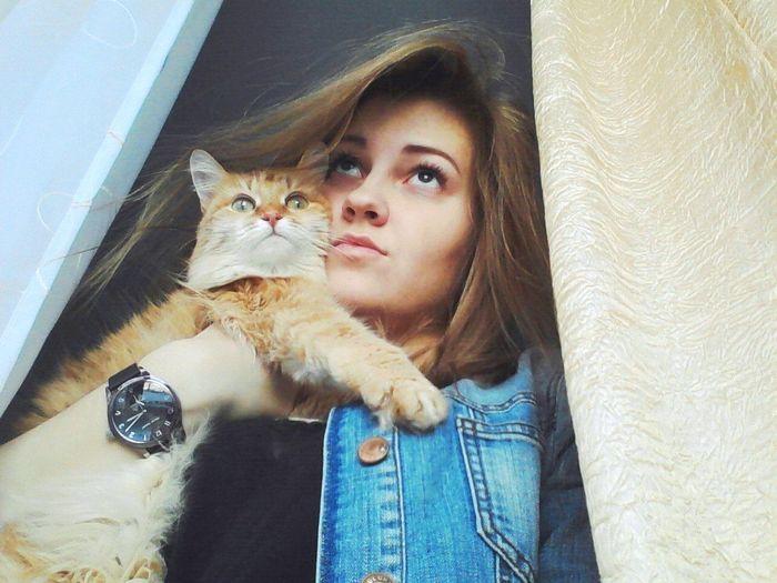 Cat My Selff Selfie