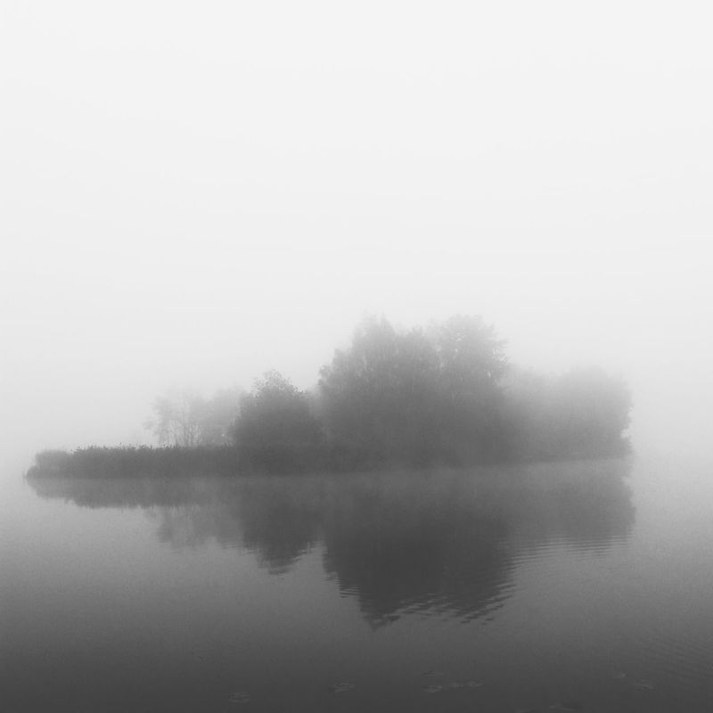 Fog Water Scenics Lake Tree Beauty In Nature Foggy Waterfront Non-urban Scene Idyllic Nature Majestic Shootermag Shootermag_poland Bnw_captures Bnwbeauty Foggy Morning Bnw_top Lovesilesia Tychy Paprocany