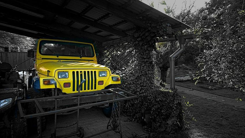 Transportation Indoors  Day No People Outdoors Car Land Vehicle Mode Of Transport Tree Freshness XperiaZ5 Xperia Z5 Sony Xperia Photography. XPERIA Xperiaphotography Cars