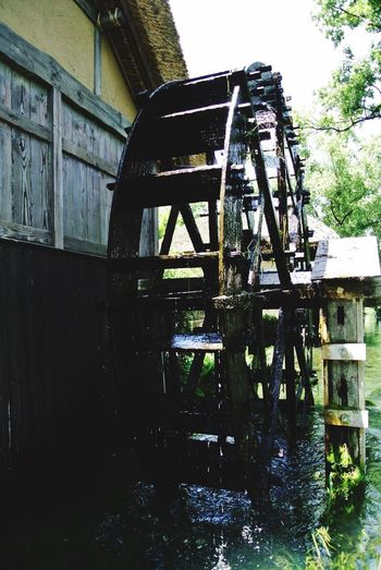 長野県 安曇野市 大王わさび農場 Japan Nagano Azumino Daiou Wasabi Farm Nature River Spring Water Transparency Waterwheel