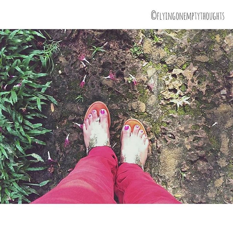 •Stumbling Around• Ever feel lost ,as if you are dragging yourself through life? Meh... Gottafigureitout Find on VSCO! VSCO Vscocam Vscogrid kerala travel morning india simple feet happyfeet lost life Photooftheday Instagood Instamood Photo Red Shoes sandals Instaphoto