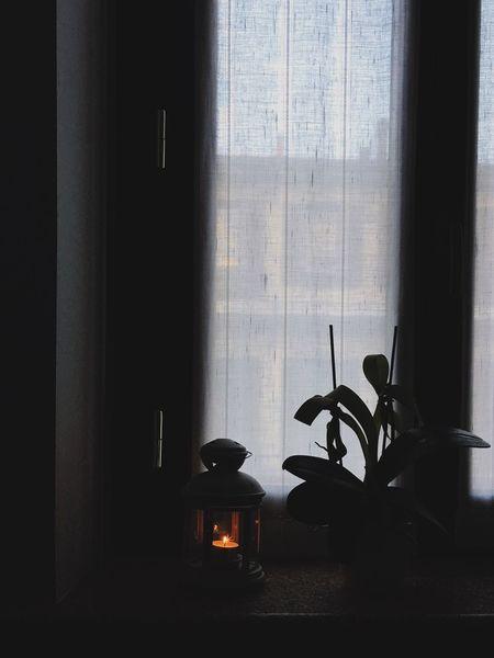 Always Be Cozy Our cozy home. cCurtainwWindowhHome InteriorpPlantnNo PeopledDrapes dDaylLifestyles