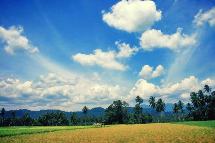 Sumbar Pemandangan Alam Padang Travel Photography Travelphotography Beutiful Sky