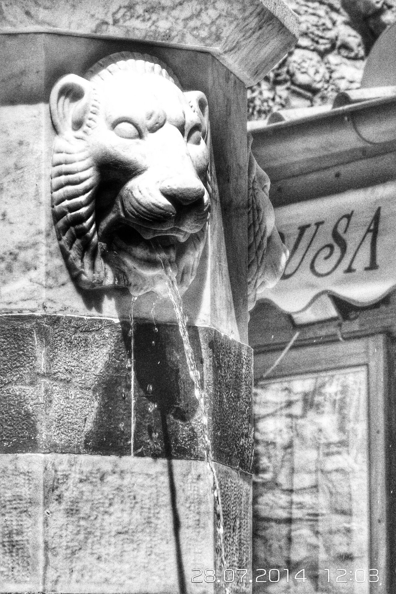 28 luglio Monochrome Portovenere Fontanelle Liguria