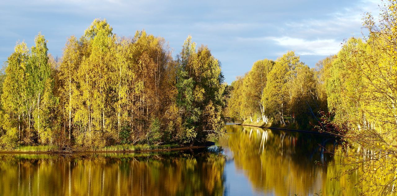 Fall/Autumn has come! Fall Autumn Panorama Beautiful Nature Nature Photography Nature Scenery End Of Summer Pentax Fall Beauty Edited On IOS