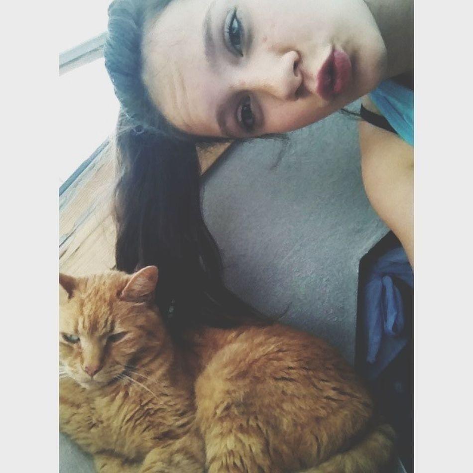 Little cat baby❤