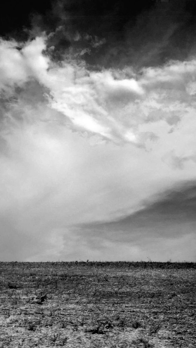 Cloudy Skies. Cloud Clouds And Sky Sky Black And White B&w Spring, Texas Houston Nature Texture Iphonephotography On The Way