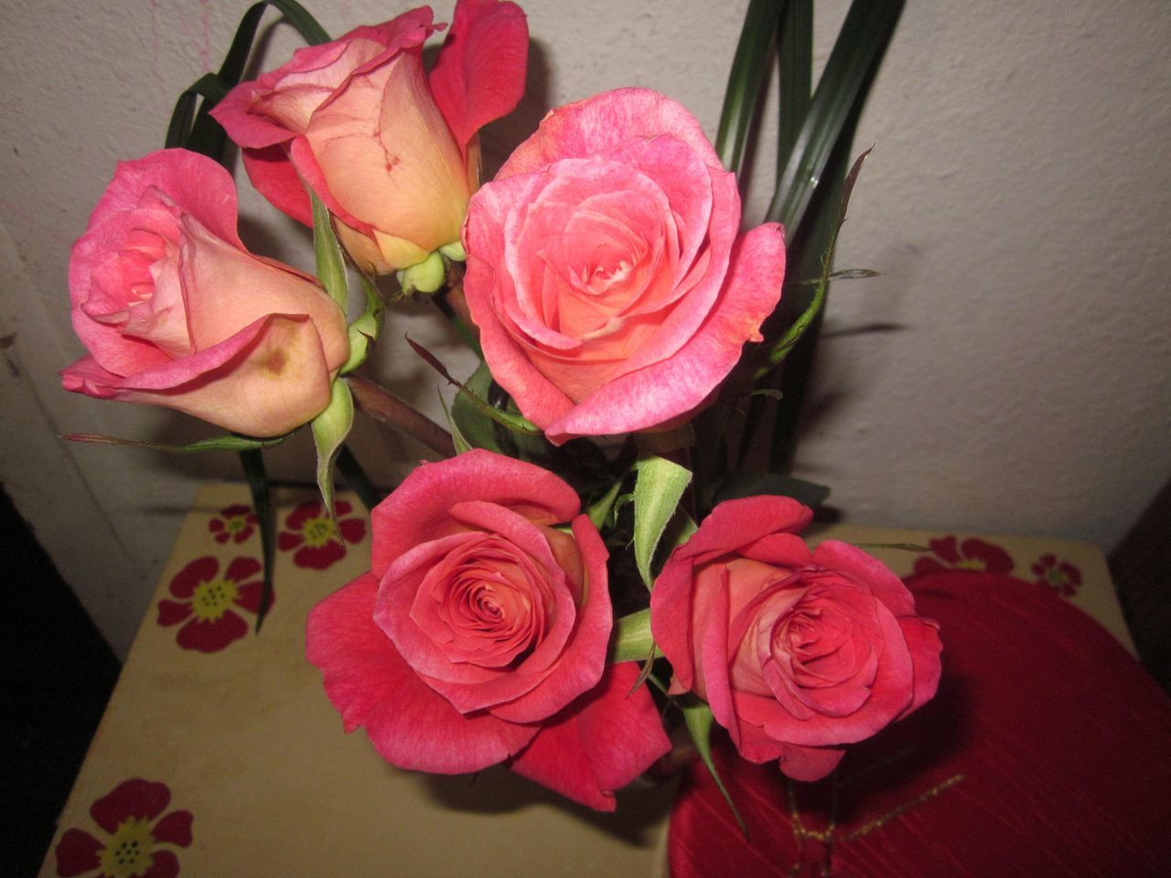 flower, petal, fragility, rose - flower, freshness, beauty in nature, no people, flower head, nature, indoors, growth, close-up, day