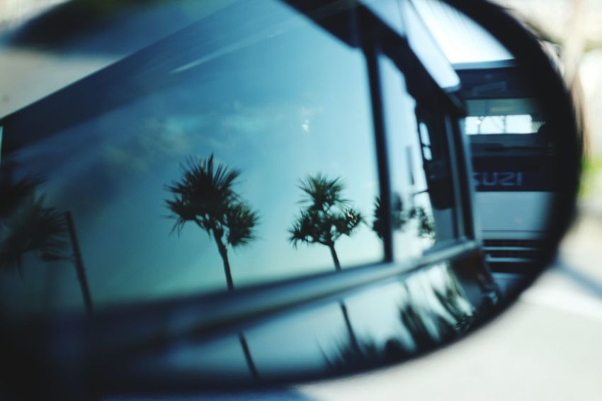 Car Palm Tree Transportation Tree Window Reflection Mode Of Transport Land Vehicle Day Photography Themes No People Outdoors Sky Technology Close-up Sidemirror Canon Induster61 Vintagelens Bokeh Oldrends Okinawa Sommergefühle